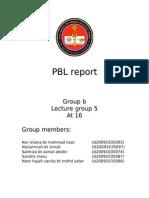 Pbl Report