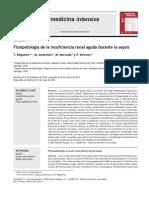 Fisiopatologia de La Insuficiencia Renal Aguda Durante La Sepsis