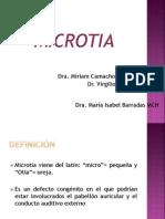 Clase Microtia (1)