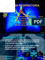 FUNCION_RESPIRATORIA