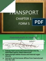 Transport(Kumpulan Izrah)