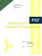 Trabajo Sistema de Información