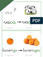 plurals_català