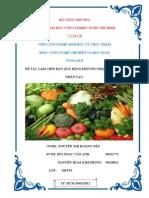 tiểu luận môn rau quả