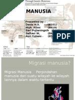 MIGRASI MANUSIA 2