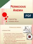 Pernicious Anemia - Mitch