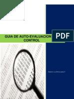 Microsoft Word Guia Autoevaluacion de Control
