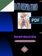 RESPIRATORIO-37