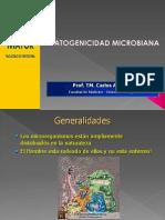 Patogenicidad Obstetricia