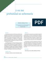 Rol Del Profesional en Enfermeria