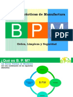 BPM  2011 Modificado
