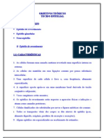 Objetivos_TecidoEPITELIAL