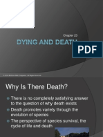 Insel11e_ppt23 Dying Death