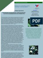 NECESIDADES NUTRICIONALES Y FERTILIZACIÓN DEL ARANDANO EN ETAPA PRODUCTIVA