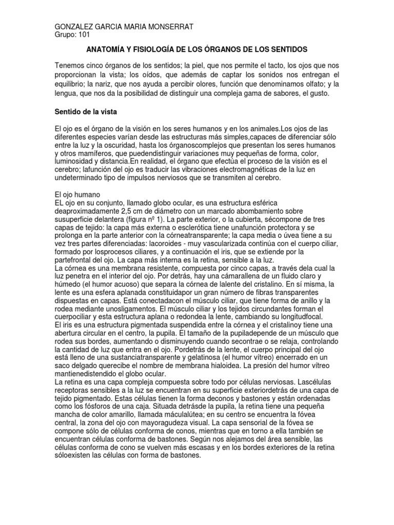 ANATOMÍA Y FISIOLOGÍA DE LOS ÓRGANOS DE LOS SENTIDOS
