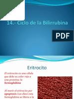 1.- Ciclo de La Bilirrubina