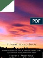 TIBIAMENTE ANOCHECE - PROGRAMA
