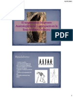 El surgimiento del género Australopithecus y su impacto
