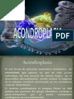 ACONDROPLASIA. GENETICA