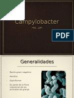 Infección por campylobacter y giardia