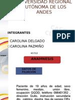_PRESENTACION-Caso