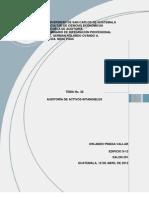 T38-G15 Auditoria de Activos Intangibles