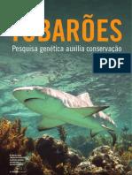 artigotubarao288