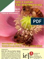 """IEA - Palestra """"Dietas e Castas, o exemplo das abelhas sociais"""""""