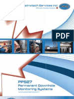 PPS27 Permanent Downhole Monitoring Systems