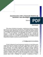 Apontamentos sobre a formalção historica da amazonia_Kelerson_Costa