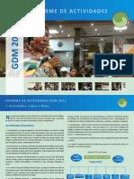 informe 2011