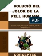 Evolució del color de la pell humana