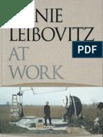 Leiboviz at Work-1