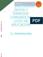 Reforestacion Espacios Liceo de Aplicacion