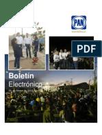 Boletin Electronico No. 10-2012