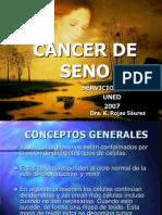 cancerseno2007