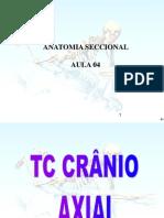 ANATOMIA SECCIONAL (AULA 4).
