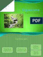 Organicismo