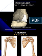 Resumen de Musculo-esqueletico Unprg