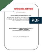Microsoft Word - Gaviones Buscagro2[1]