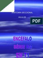 ANATOMIA SECCIONAL (AULA 5).