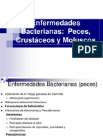 Clases 9-10-11 bacterias (1)