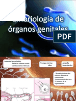 Embriología de Aparato Reproductor Femenino
