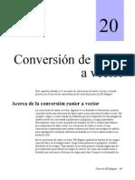 Conversion Raster a Vector