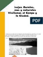 Campo y Ciudad Actividad 01 Escuela 13 DE 19