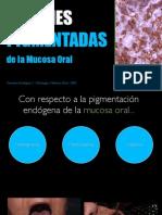 Lesiones Pigmentadas. Clase introductoria