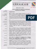 resolucion CONAMAQ