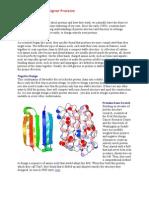 Designer Proteins