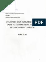 La Curcumine Dans Le Traitement Des Maladies Inflammatoires de l'Intestin