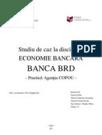 Proiect Economie Bancara BRD an 3 - GR 21